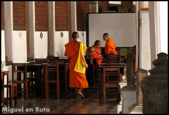 Phra Pathom Chedi Monks