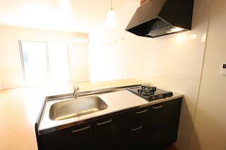 徳島 佐古 蔵本 徳島大学 一人暮らし 築浅 外観 キッチン 対面
