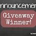 Blog Giveaway Winner | DotComTurns1