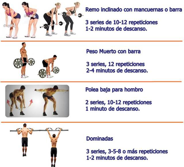Rutina de ejercicios del día martes para trabajar los músculos de la espalda y hombros
