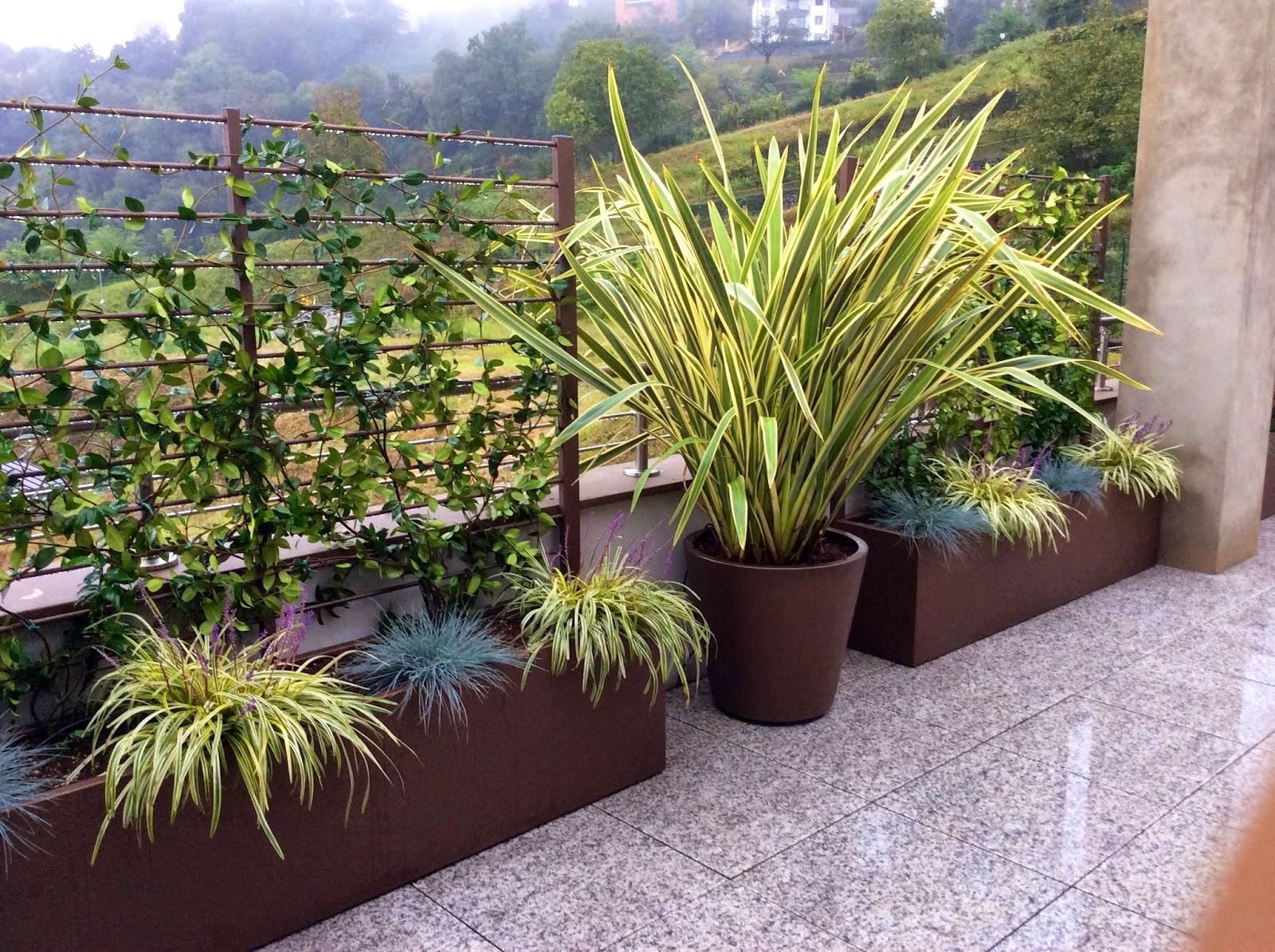 Martin design ita arredo per terrazzi con fioriere su misura - Piante sempreverdi per terrazzi ...