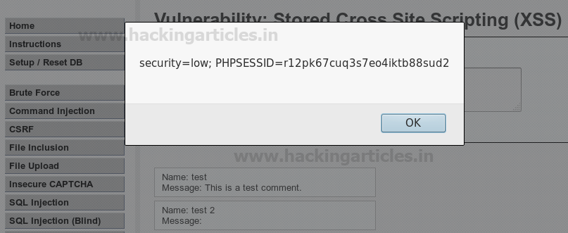 Beginners Guide to Cross Site Scripting (XSS)