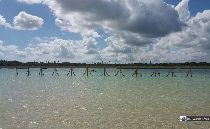 Diário de Bordo - Lagoa do Paraíso - Jericoacoara, Ceará