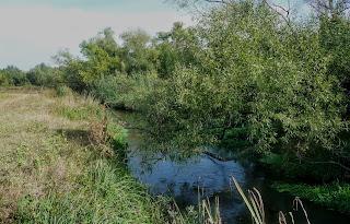 Клебан-Бык. Река Кривой Торец