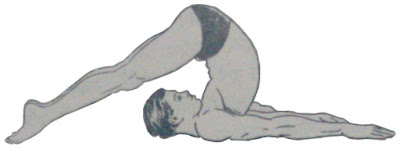 Halasan or Plow pose - Steps and Benefits