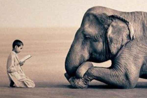 secretul echilibrului este ascultarea celorlalti