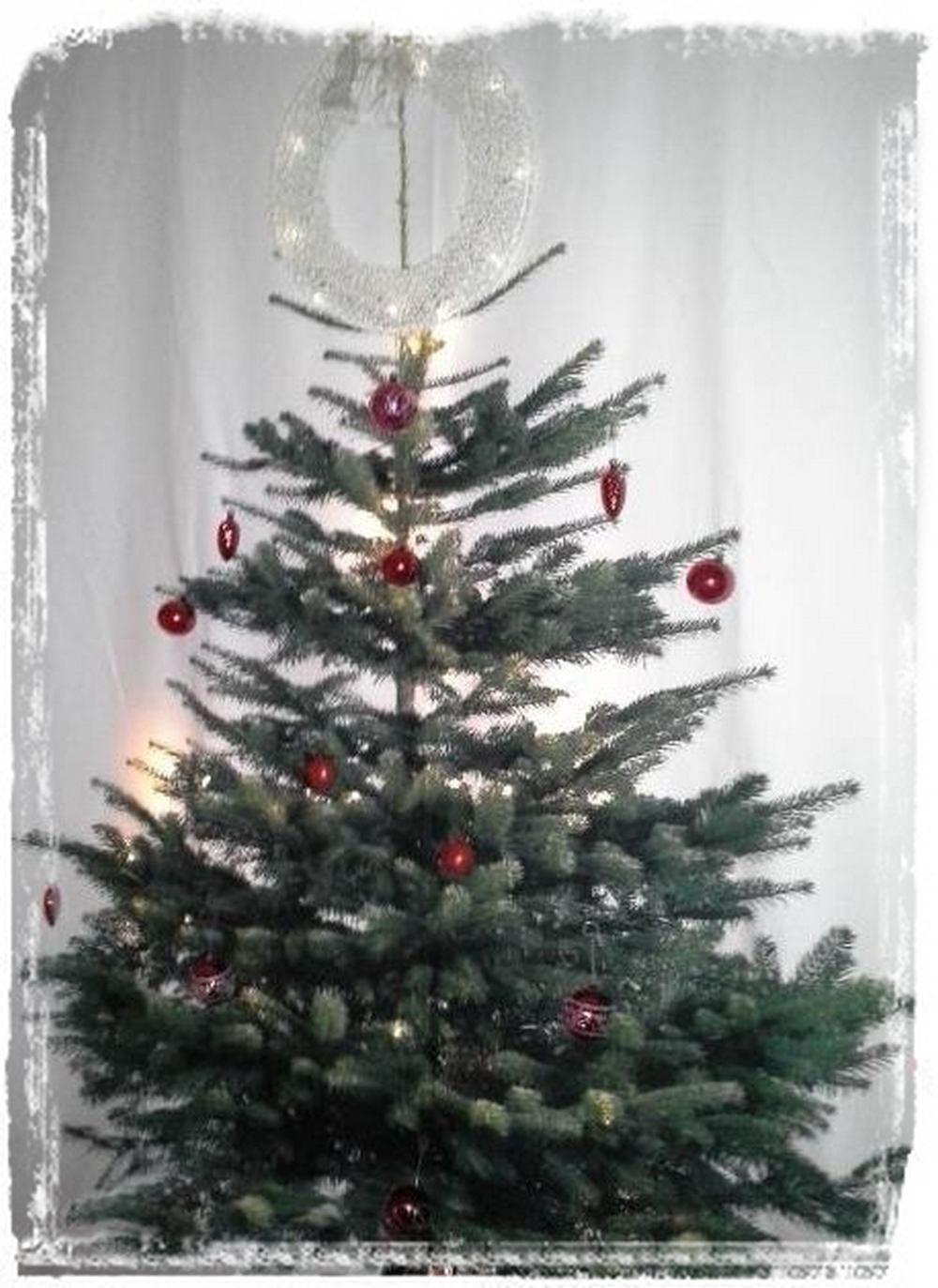 Ikean-joulukuusi-kangas.jpg