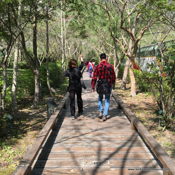 nature trail near visitor center at Taroko Gorge National Park in Hualien, Taiwan