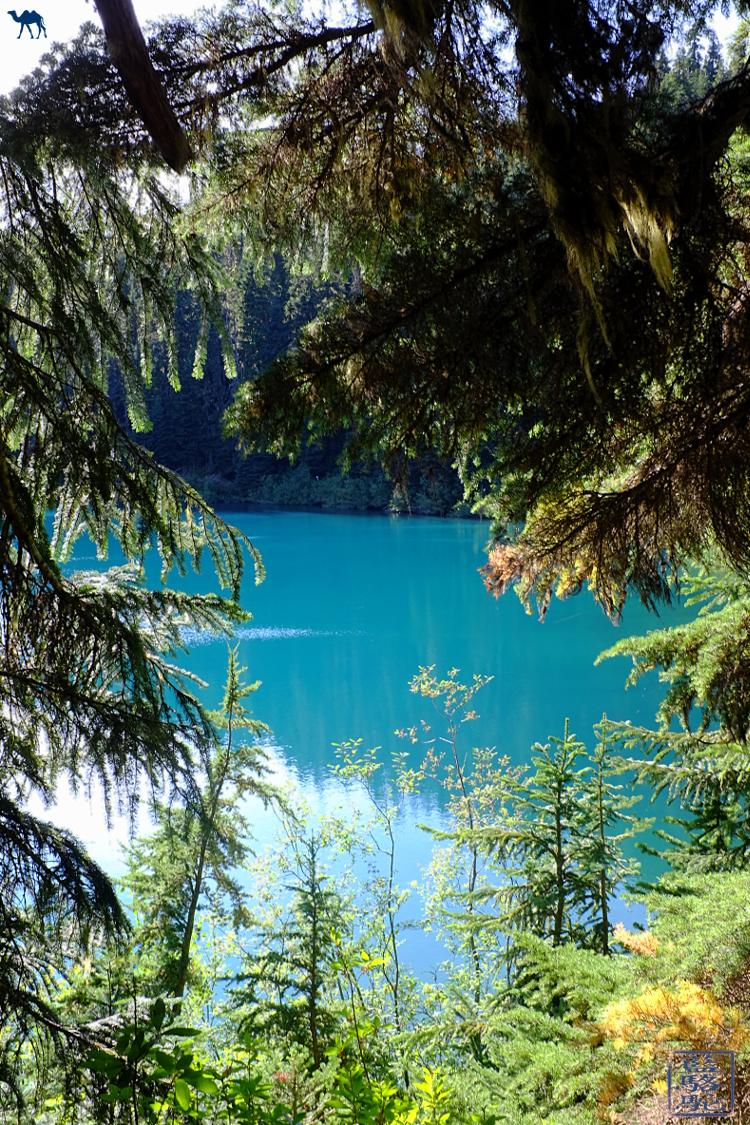 Le Chameau Bleu - Vue sur Barrier Lake Canada