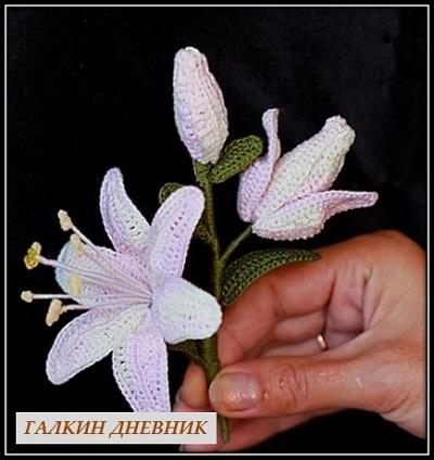 rukodelie cveti shema kryuchok lilii 2