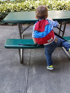 toddler wearing a backpack gift
