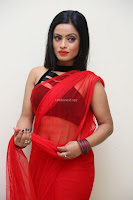 Aasma Syed in Red Saree Sleeveless Black Choli Spicy Pics ~  Exclusive Celebrities Galleries 095.jpg