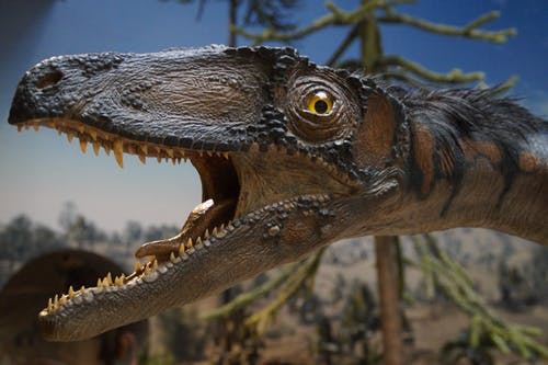 Will History Of Dinosaur Ever Rule the World, History of Dinosaur, Blooded Reptiles
