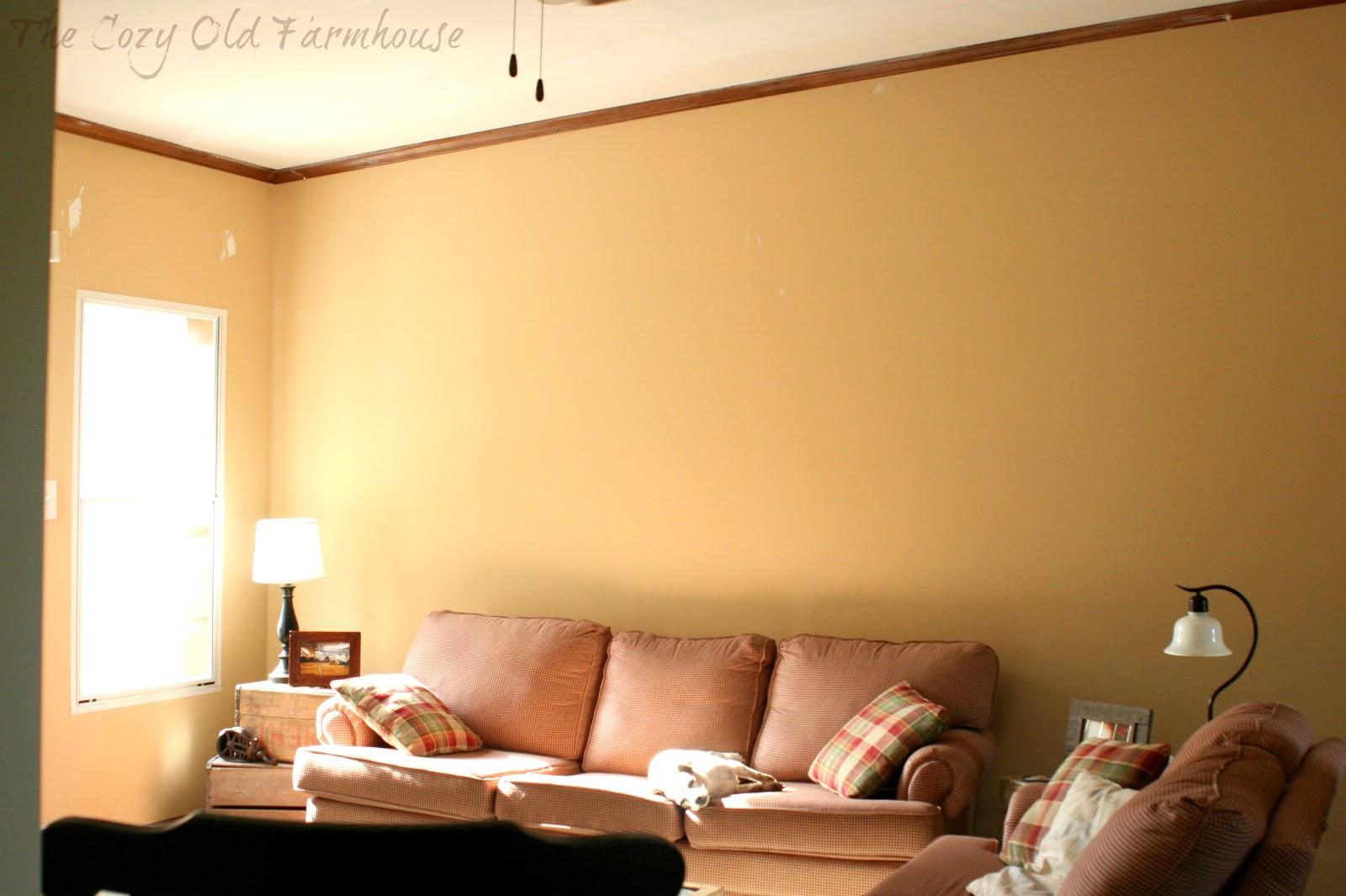 Enchanting Living Room Wall Color Shades Collection - Wall Art ...