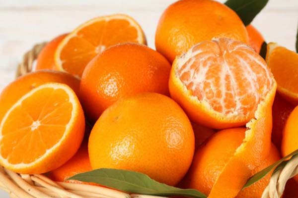 Kandungan Gizi Nutrisi Buah Jeruk Dan Manfaat Buah Jeruk