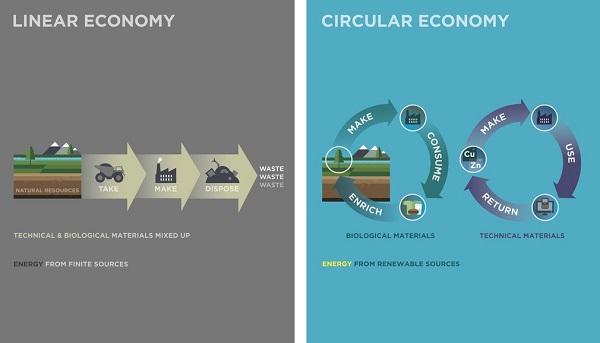 Autossustentável: Economia Linear x Economia Circular