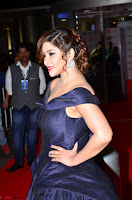 Payal Ghosh aka Harika in Dark Blue Deep Neck Sleeveless Gown at 64th Jio Filmfare Awards South 2017 ~  Exclusive 038.JPG