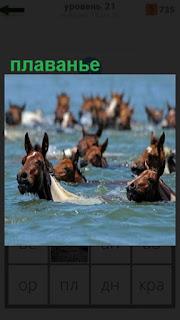 1100 слов в воде лошади занимаются плаванием 21 уровень