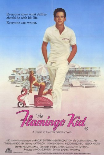 review the flamingo kid