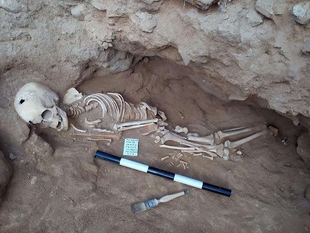 Graeco-Roman industrial site, graves found in Egypt's Al-Amriyah