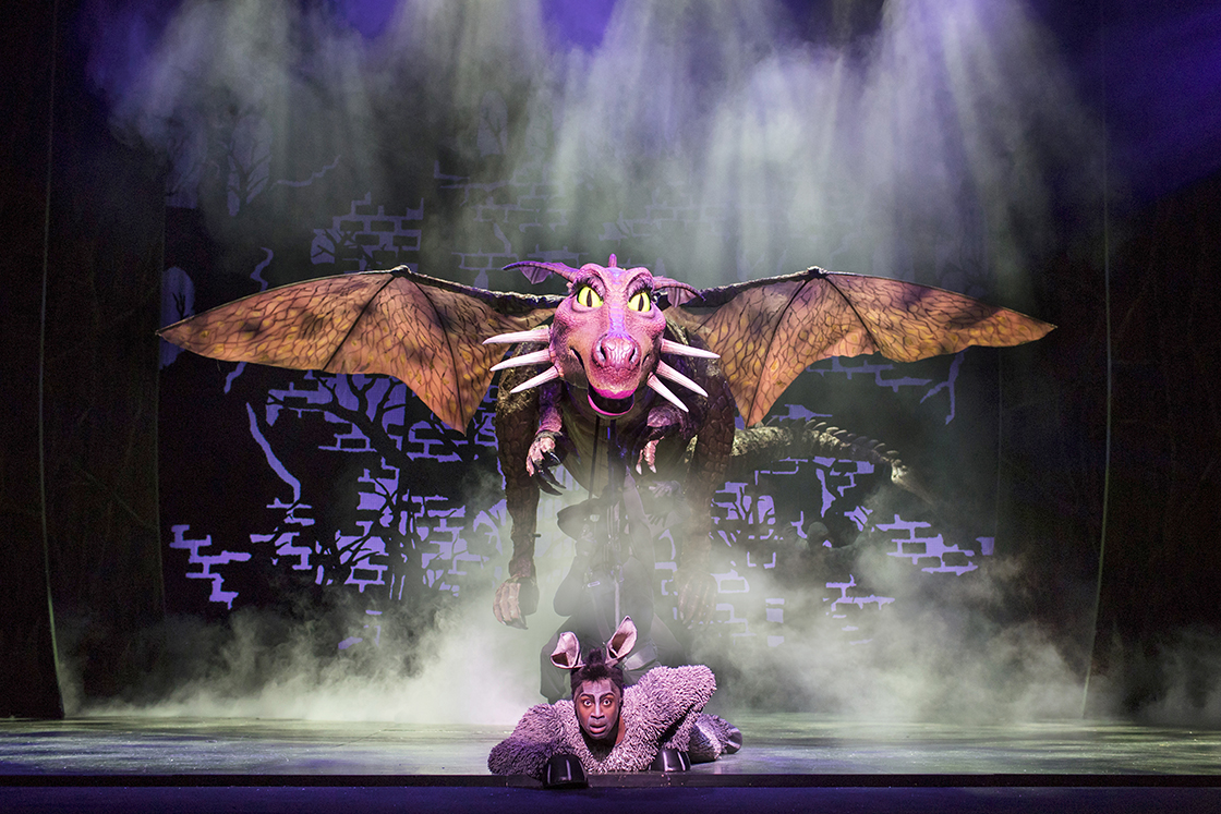 Review Shrek The Musical At The New Victoria Theatre In Woking Pocket Size Theatre
