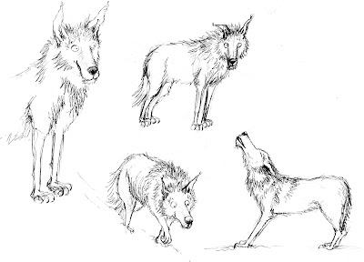 croquis illustration wolf loup content heureux
