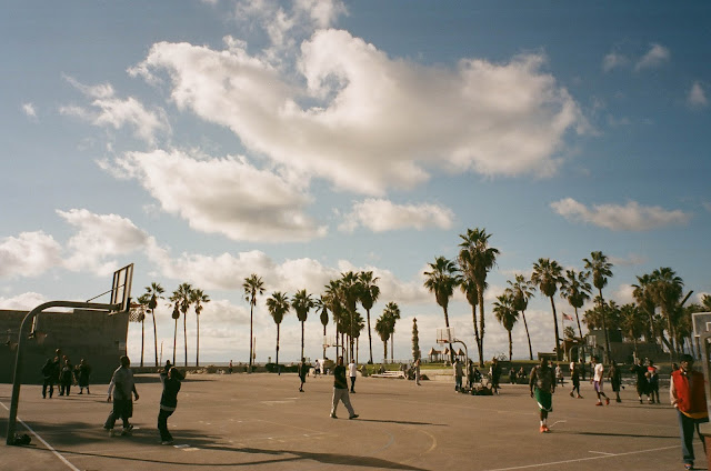 Venice Beach beach palm basketball