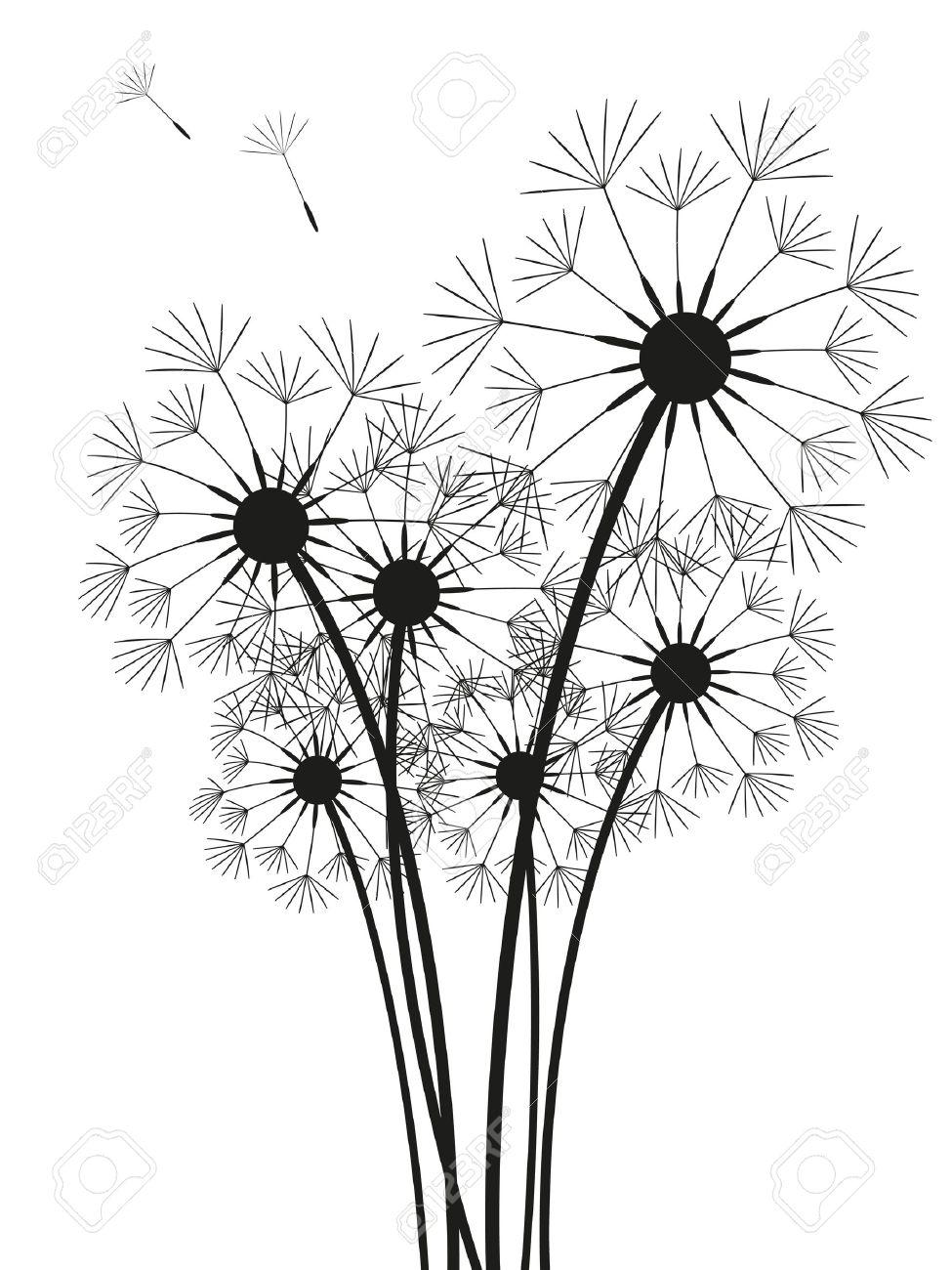 57 Gambar Bunga Dandelion