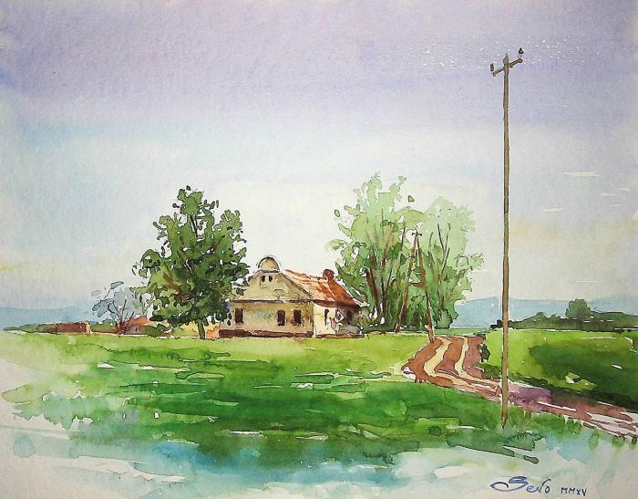 Сербский художник. Dejan Sevo