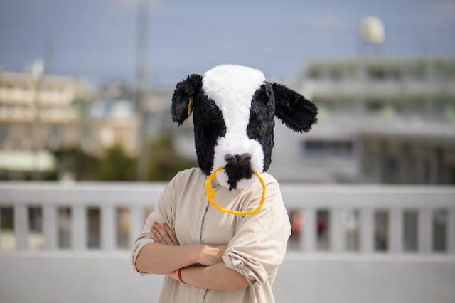 腕組みする牛
