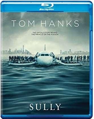 Sully: Hazaña en el Hudson (2016) HD 1080p Latino