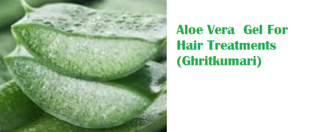 Aloe Vera  Gel For Hair Treatments (Ghritkumari)
