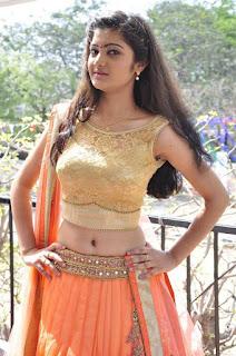 Actress Pallavi Naidu Stills in Half Saree at Lord Shiva Creations New Movie Launch 0007.jpg