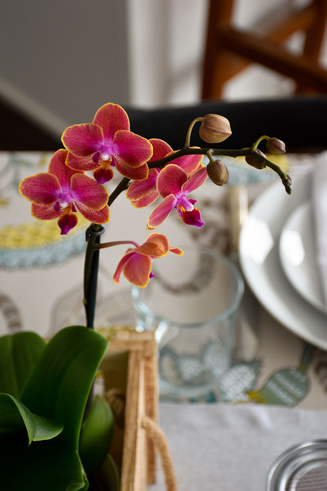 How To Create Beautiful Spring Table Decor On a Budget (With Vegan Crepes)