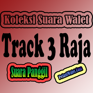 Suara Walet Panggil Track 3 raja