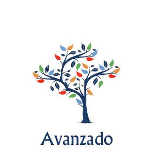 Asesoramiento de nivel avanzado - Cuevas y Montoto Consultores
