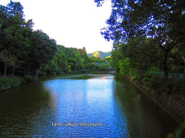 Evening in Arashiyama