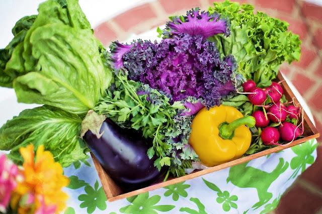 Tips Kesehatan, Makanan untuk orang yang punya kolesterol tinggi, cara memilih makanan untuk penderita kolesterol, jenis makanan yang cocok untuk penyakit kolesterol,