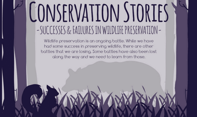 Conservation Stories: Successes and Failures in Wildlife Preservation