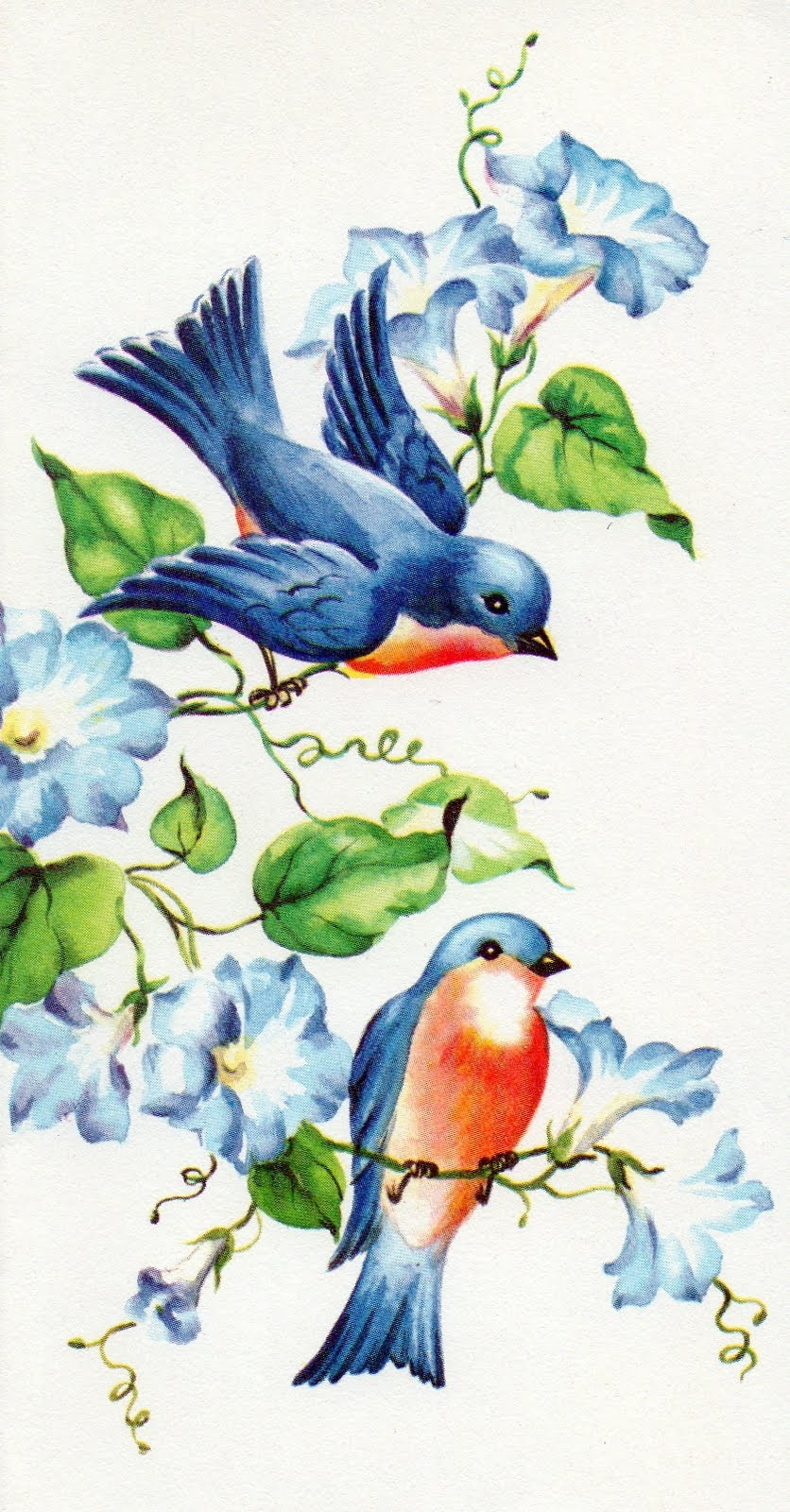 Theme, will vintage bird house paintings are