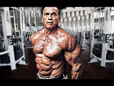 roman chair situps arnold oversized rocking cushions body fitness tips and tricks 2016 with some fame as a bodybuilder himself the iron guru he became known was more famous for helping newcomer to usa schwartzenegger move