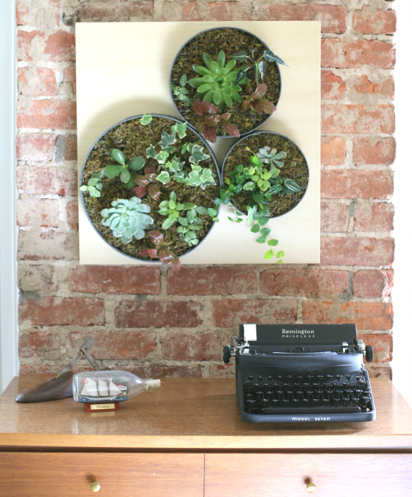Diy vertical succulent garden ehows ikea lack hack projectthrowdown challenge
