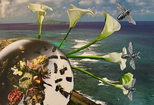 """Getting Out Into Nature"" collage with ocean, flowers, and bees"