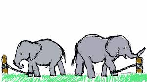 The elephant and the rope - A Short Elephant Story For Kids