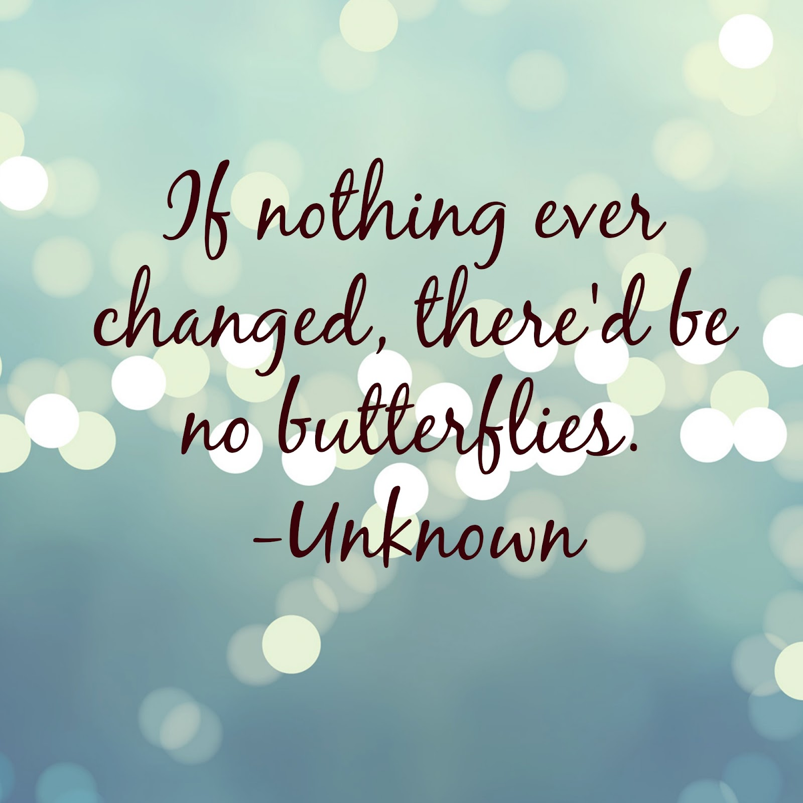 Quote of the Day :: If nothing ever changed, there'd be no butterflies