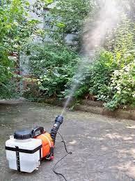 Como-mantener-los-mosquitos-lejos