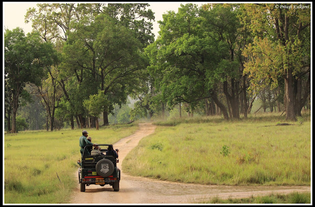 Beautiful Kanha Zone