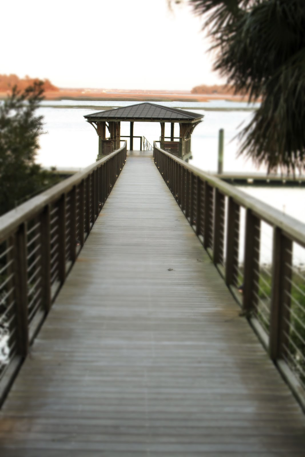 A Lowcountry Wedding at Palmetto Bluff with David Beahm ...