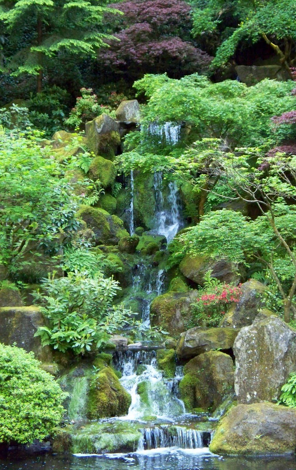 Portland Japanese Garden Store: Inside Out: Monday Adventure- Portland Japanese Garden