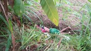 Pembunuh Imam Bukhori ternyata Tetangga Desanya